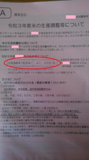Kimg2406_copy_540x960