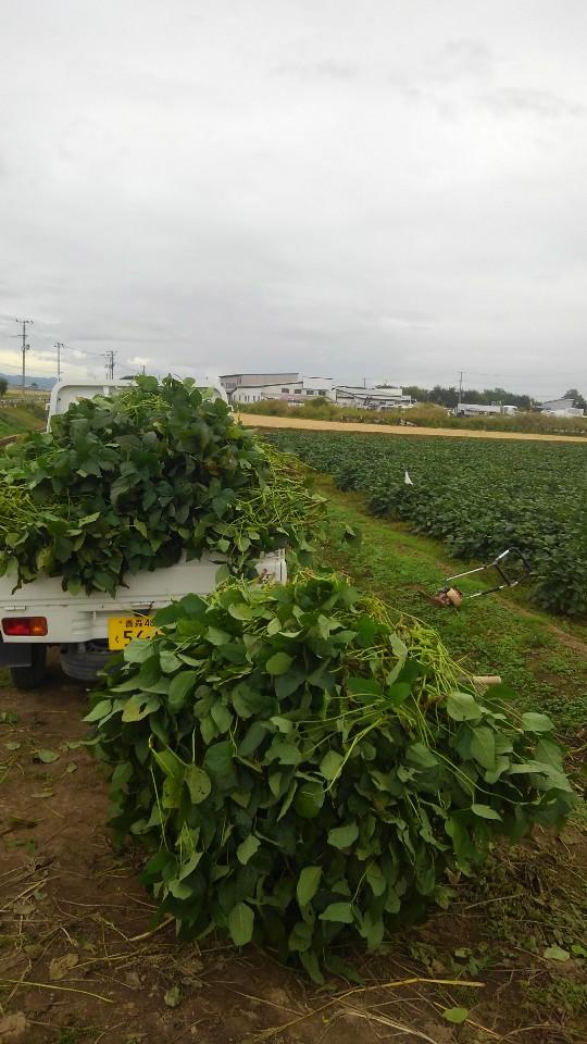 枝豆刈取機: 白戸さんち